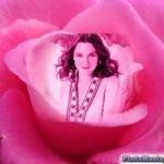Fotomontaje en una rosa