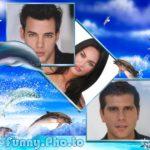 Fotomontaje con delfines
