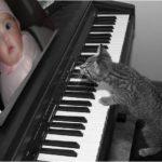 Fotomontaje en un piano