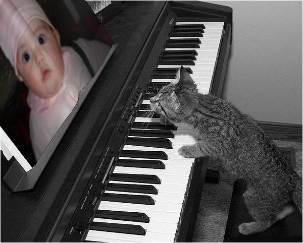 fotomontaje-piano