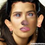 Hacer fotomontajes divertidos, en Funtastic Face