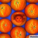 Fotomontaje en una mandarina
