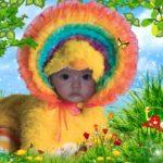 Fotomontaje en rostro de niño disfrazado de pato