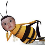 Fotomontaje en una abeja