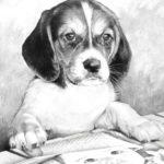 """Fotomontaje """"perro """"-retrato"""