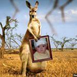 Fotomontaje con el retrato de un canguro
