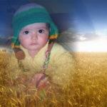 Fotomontaje en las espigas de un sembrado de trigo