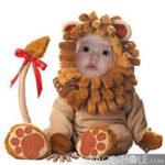 Fotomontaje con un león
