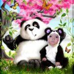 Fotomontaje en disfraz de oso panda