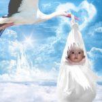 Fotomontaje en el bolso de una cigüeña