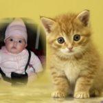 """Fotomontaje """"kitty"""""""
