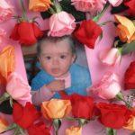 Marco de rosas para fotos
