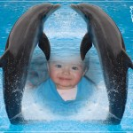 Fotomontaje junto a dos lindos delfines