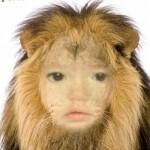 Fotomontaje gratis en el rostro de un león