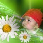 Fotomontaje gratis en Picjoke.com