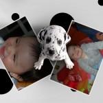 Fotomontaje para dos fotos gratis en Picjoke.com