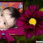 Fotomontaje gratis junto a una flor de dalia
