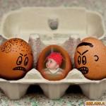 Realiza fotomontajes divertidos en Pato.pl