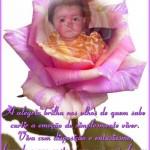 Crear un fotomontaje en una rosa