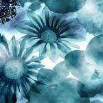 Pinceles para photoshop gratis con diseño de flores