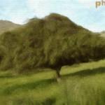 Efectos artísticos para tus fotos en Funny.photo.com