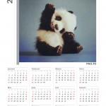 Personaliza calendarios con tus fotos