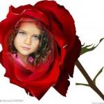 Crea fotomontajes con flores en Photomontager.,com
