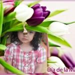 Marco con flores por el Día de la Madre