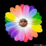 Fotomontaje de rostro en un flor multicolor
