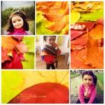 Collage para fotos con hojas secas