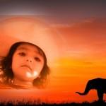 Fotomontaje con un atardecer y un elefante