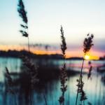 Elegir un software de edición de fotos