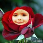 Fotomontaje de rostro en una rosa roja