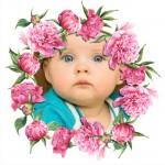 Marco para fotos con hermosas rosas rosadas