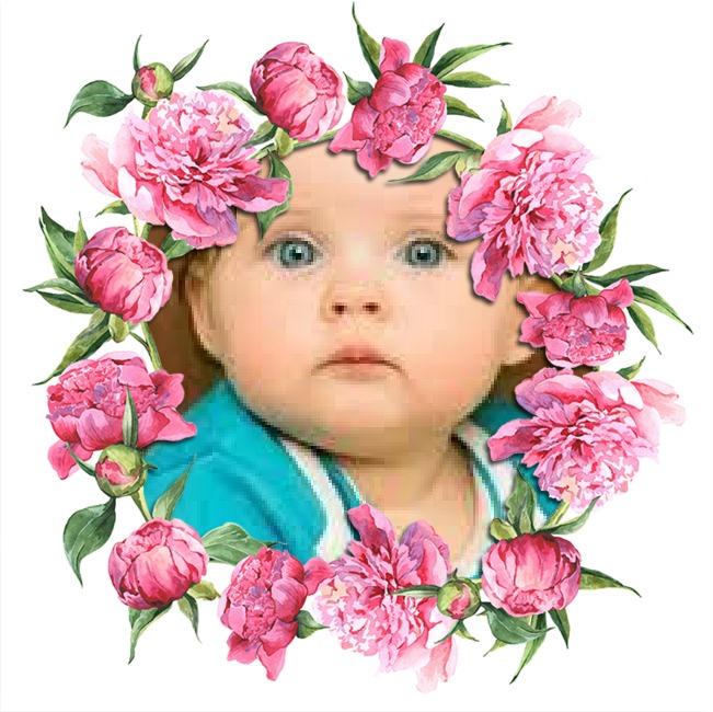 Marco Para Fotos Con Hermosas Rosas Rosadas Fotomontajes Gratis
