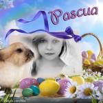 Marco para fotos con un conejo de Pascua
