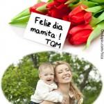 Marco con frases del Día de la Madre
